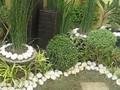 Garden Marikina
