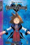 Kingdom Hearts Fun!