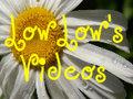 Low Low's Videos