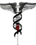 Medizin & Gesundheit
