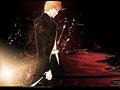 Shikon Bleach anime