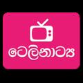 Sinhala Teledrama