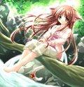 songs / anime
