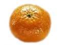 桔子Tangerine