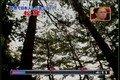 カスペ! 動画~わかるテレビ~091020