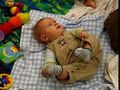 Blanket Babies