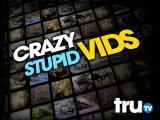 Crazy Stupid Vids