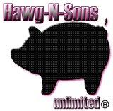 HawgNSonsCom